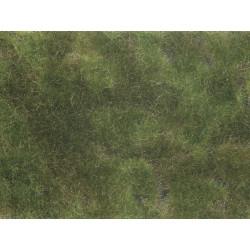 Mata de hierbas, verde oliva.