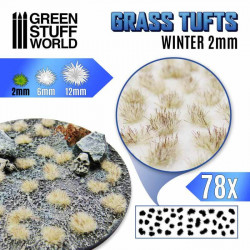 Grass tufts, white winter. 2 mm.