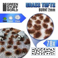 Grass tufts, burnt. 2 mm.