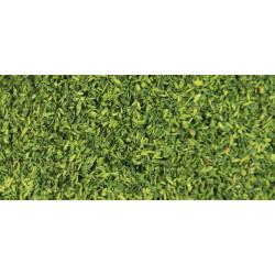 Medium willow green.