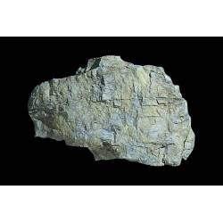 Molde para hacer rocas, Rock Mass.
