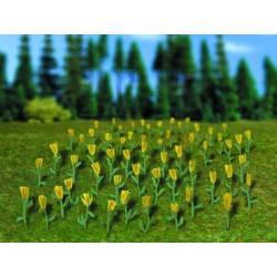 Tulips. VOLLMER 5122