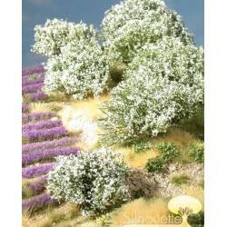 White rhododendron. SILHOUETTE 253-02