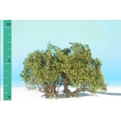 Plantas arbustivas. SILHOUETTE 250-02