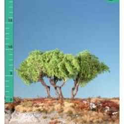Plantas arbustivas. SILHOUETTE 250-11