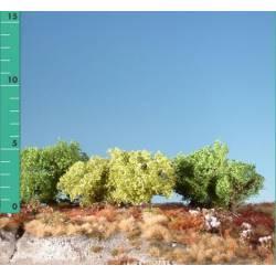 Plantas arbustivas. SILHOUETTE 251-01