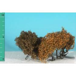 Plantas arbustivas. SILHOUETTE 250-04
