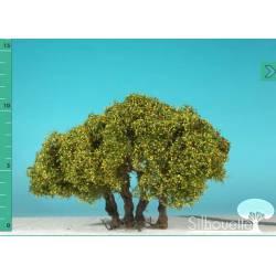 Plantas arbustivas. SILHOUETTE 250-13
