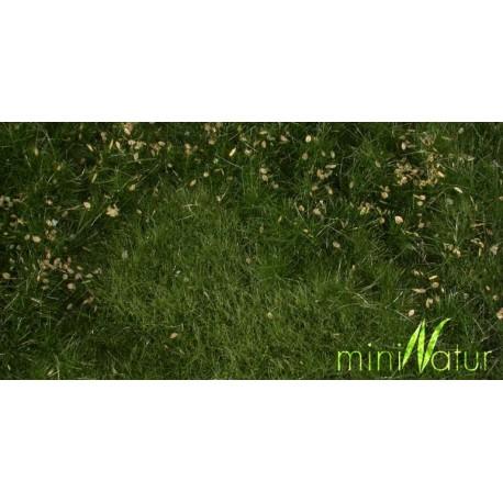 Prado con flores en verano. SILHOUETTE 734-22S