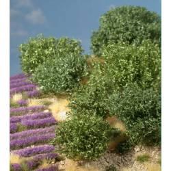 Planta arbustiva en tonos verdes. SILHOUETTE 253-00