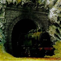 Dos bocas de túnel de una vía.