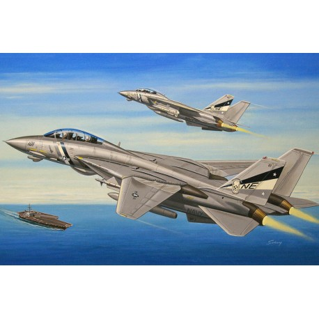 F-14D Super Tomcat. HOBBY BOSS 80278