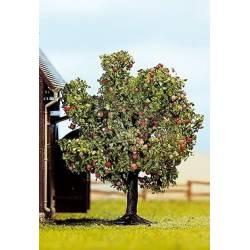 Manzano con fruta de 75 mm.