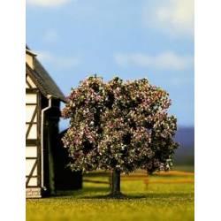 Flowering fruit tree.