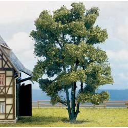 Acacia de 150 mm.