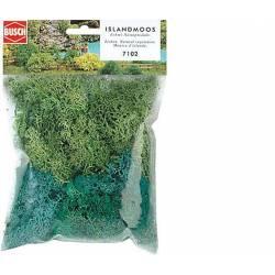 Lichen. BUSCH 7102