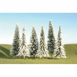 Pine trees with snow. SCENE SCAPES 32002