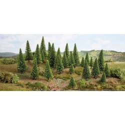 10 model spruce trees.