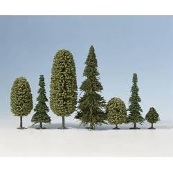 *10 árboles mixtos.