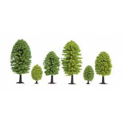 10 árboles de hoja caduca.