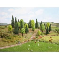 Bosque mixto, 10 árboles.