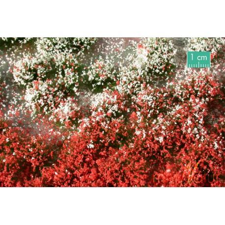 Flores en verano. SILHOUETTE 726-32S
