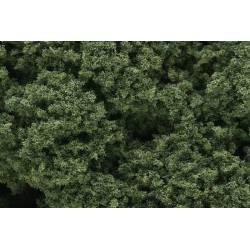 Foliage clusters medium green.
