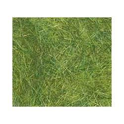 Hierba de modelismo verde.