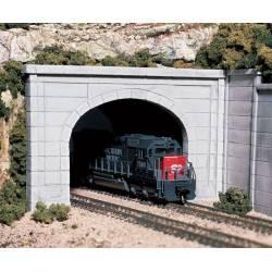 Boca de túnel, vía doble. WOODLAND C1156