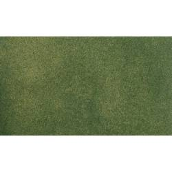 Green grass medium roll.