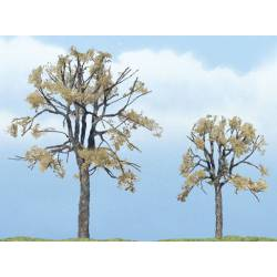 Dead elm. WOODLAND TR1602