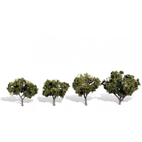 4 árboles, verano. WOODLAND TR3504