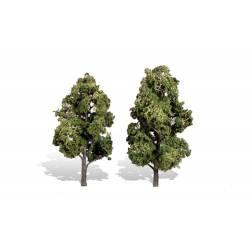 2 árboles, verano. WOODLAND TR3516