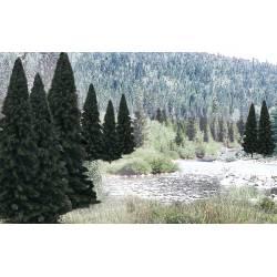 Lote de pinos. WOODLAND TR1586